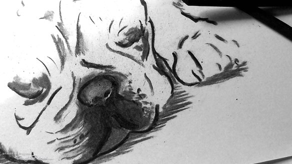 French Bulldog art in progress