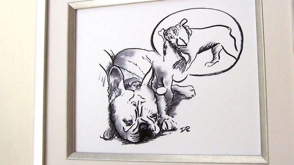 Framed Sleeping French Bulldog by Douglas Rickard