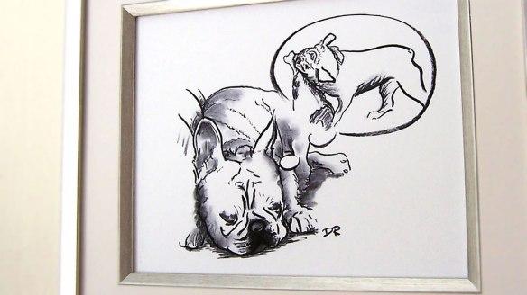 Framed Sleeping French Bulldog by Douglas Rickard