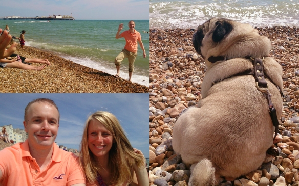 Pug day trip to Brighton with Douglas Rickard