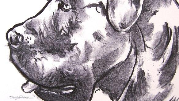 Italian Mastiff art