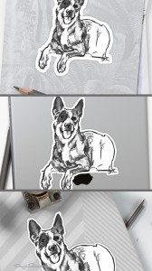 Blue Heeler stickers