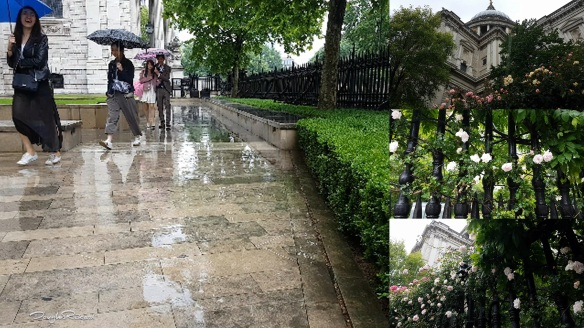 Summer Showers in London